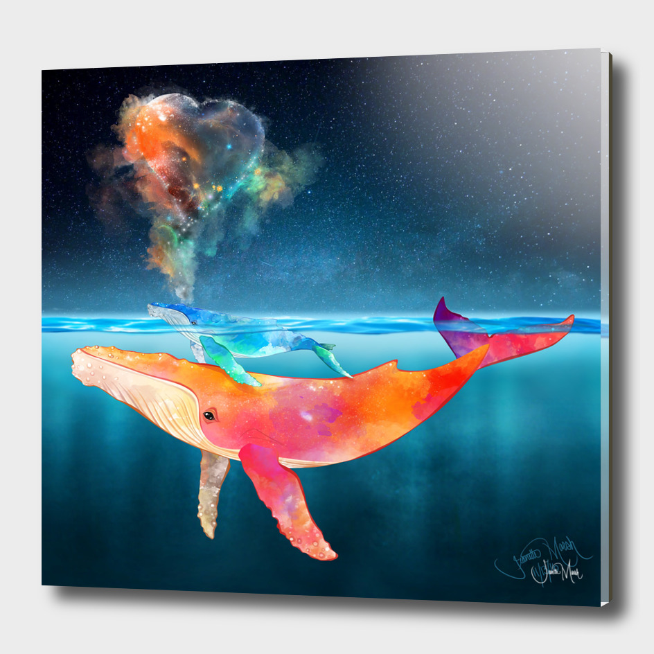 Water Colors the Humpback Whales