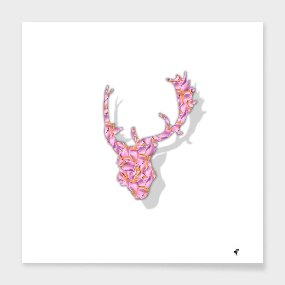 Deer in Floral Summer
