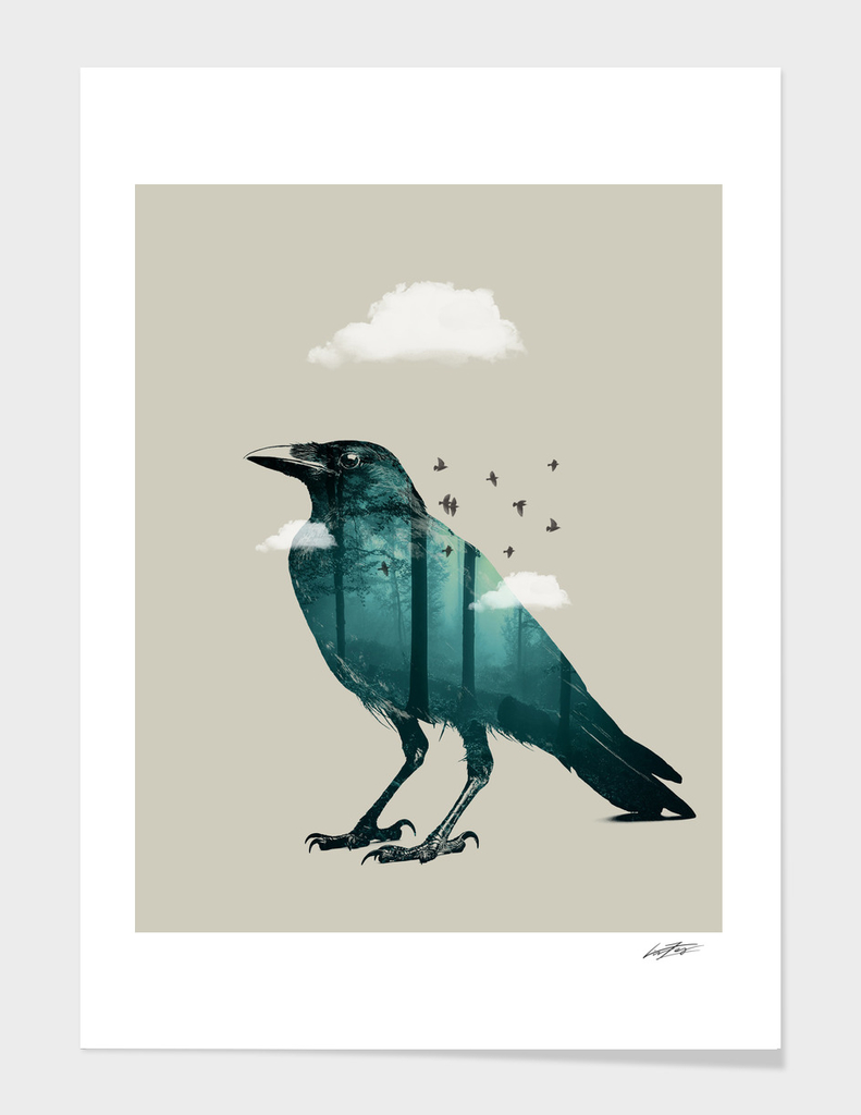 Teal Raven