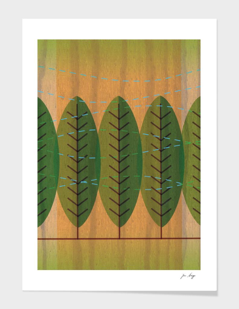 Wind n Trees
