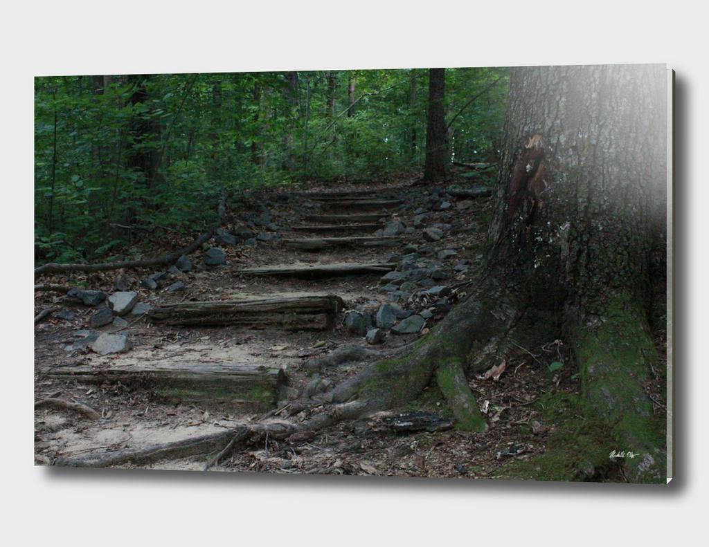 A Hidden Path