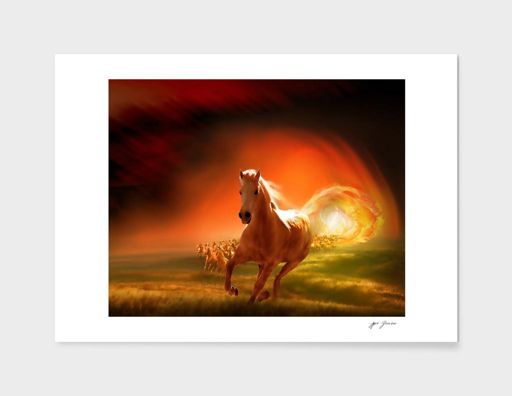 Gallop Through The Sun