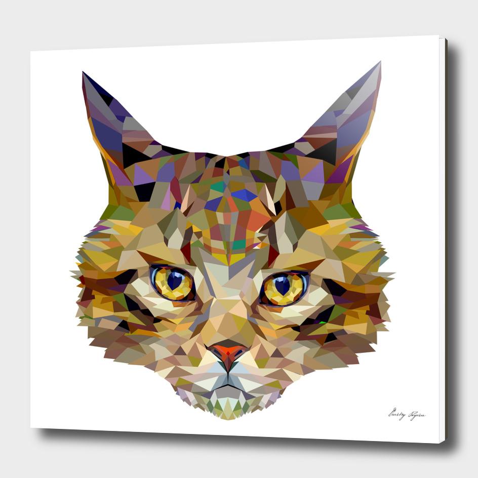 Triangular cat