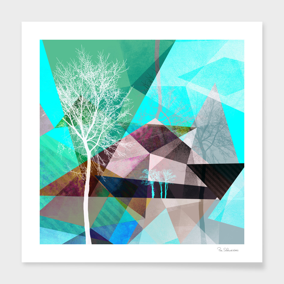 P16 TREES AND TRIANGLES