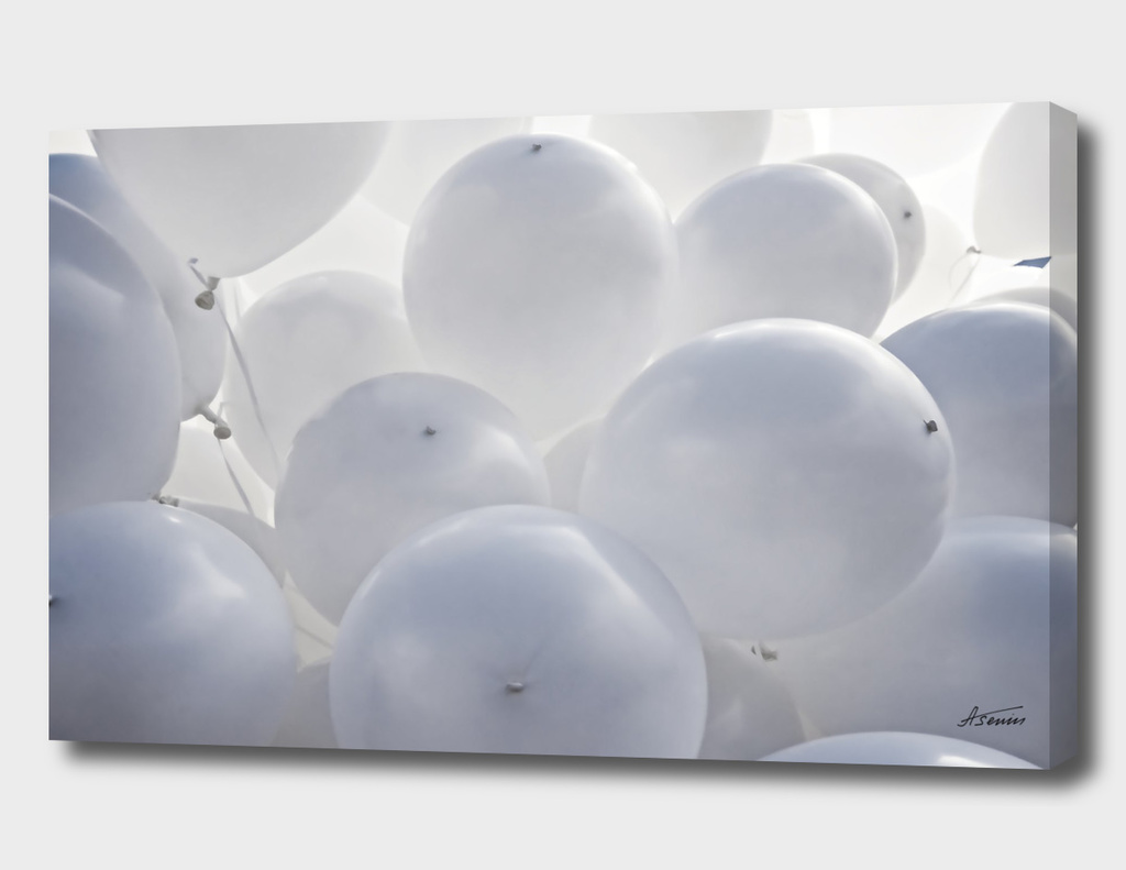 White Toy Balloons