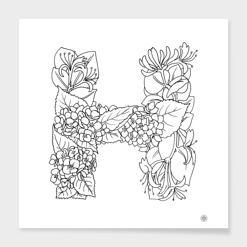 Honeysuckle & Hydrangea