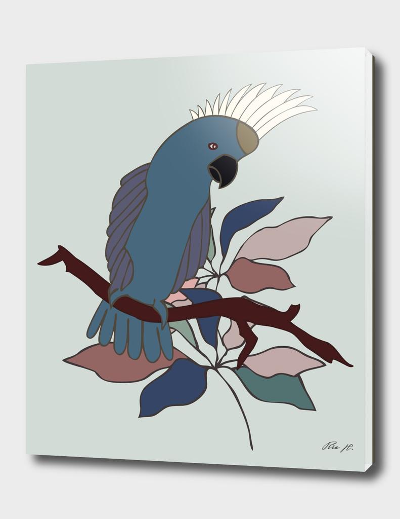 Multicolor Parrot Boy