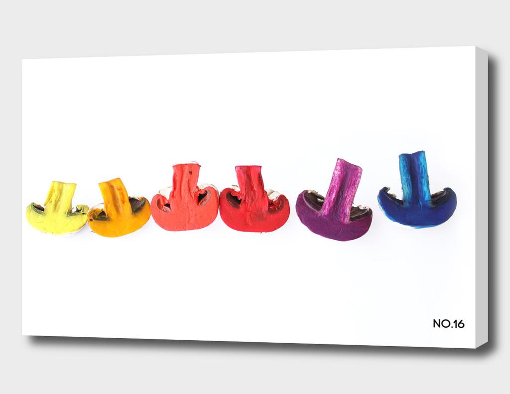 mushroom of colors