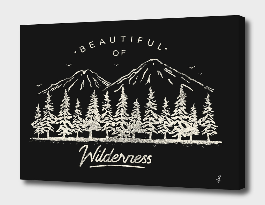 Beautiful of Wilderness