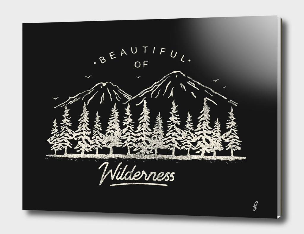 Beautiful of Wilderness