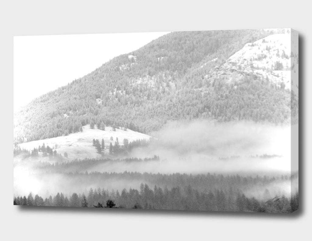 Fog Crawl up Gillette Mt BW