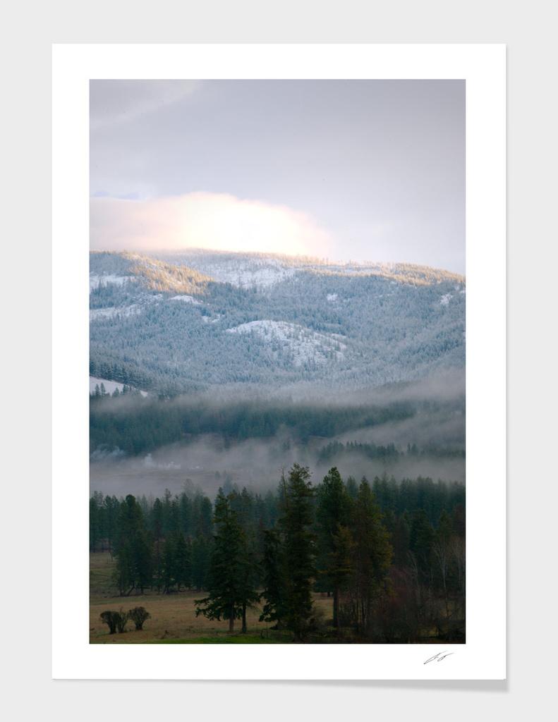 Fog to Snow top