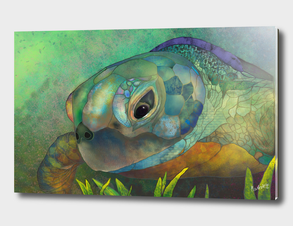 Turquoise Amber Sea Turtle_Craftiespot