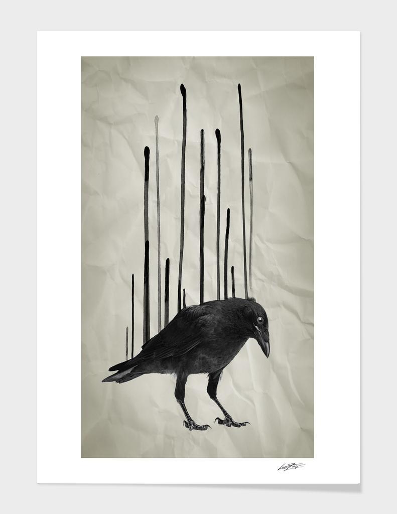 Raven Drip I