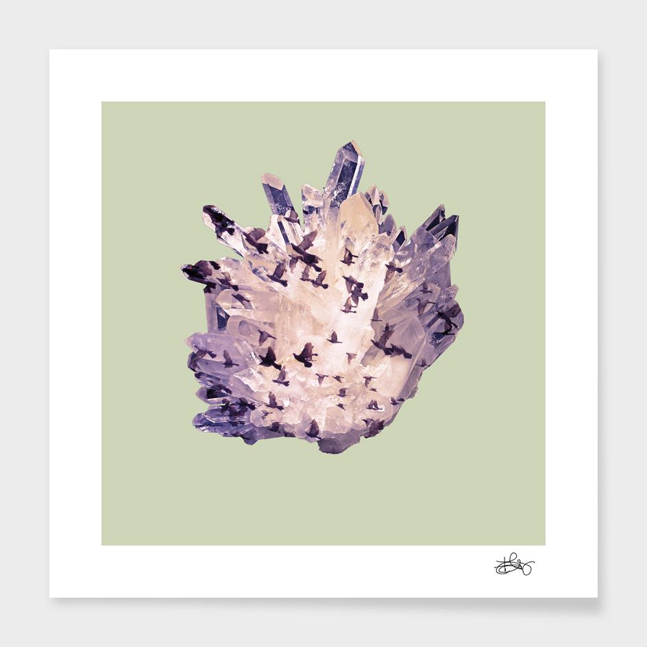 Birds in Minerals 3