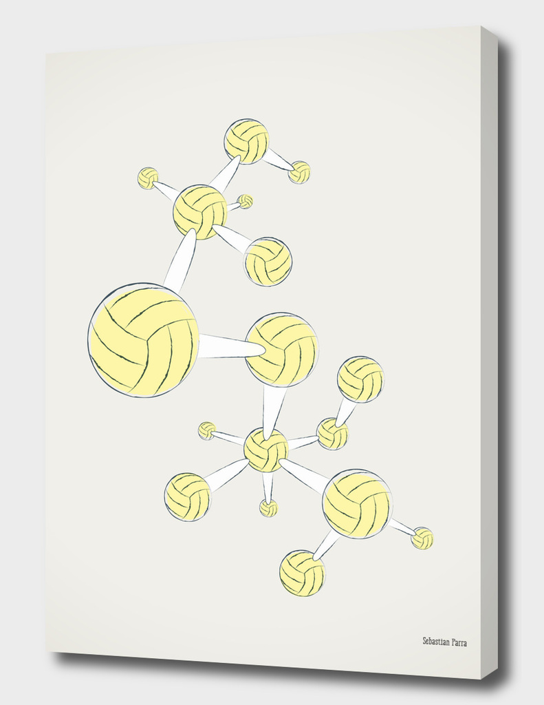 Soccer DNA