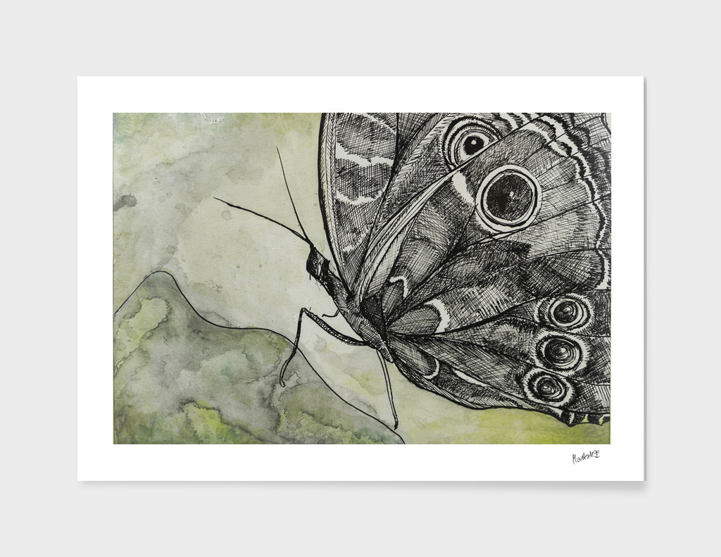Butterfly 1_ Indian Ink_Craftiespot