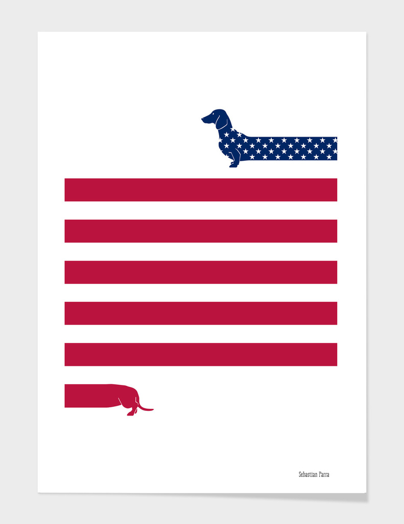 (Patriotic) Long Dog