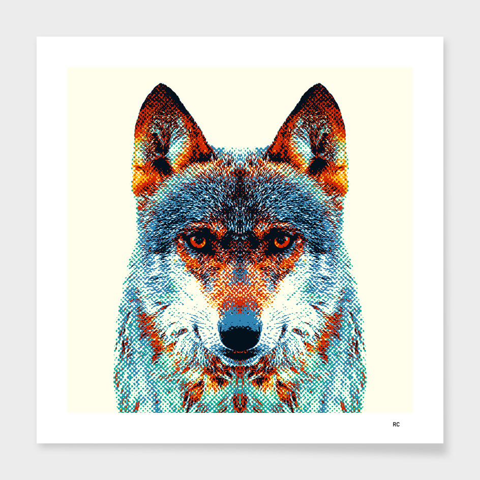 Wolf - Colorful Animals