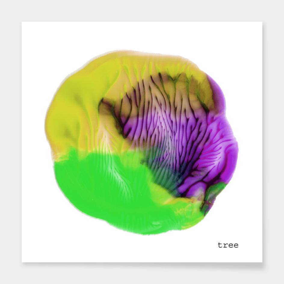 Flower in C