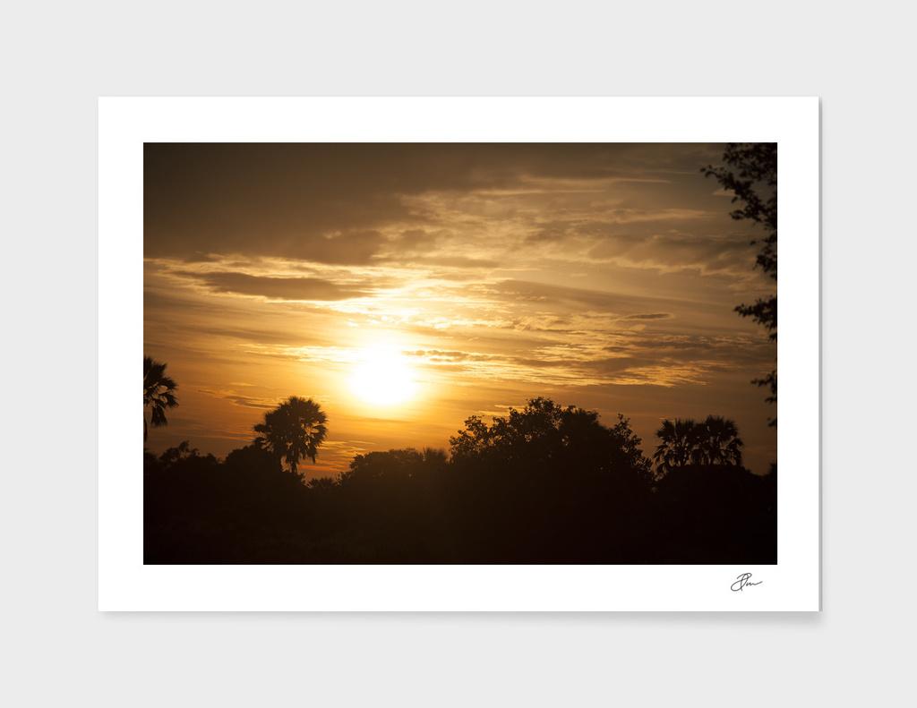 Golden_landscape_Botswana_03
