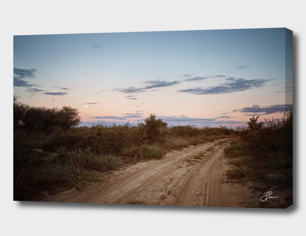 Botswana_wildernes