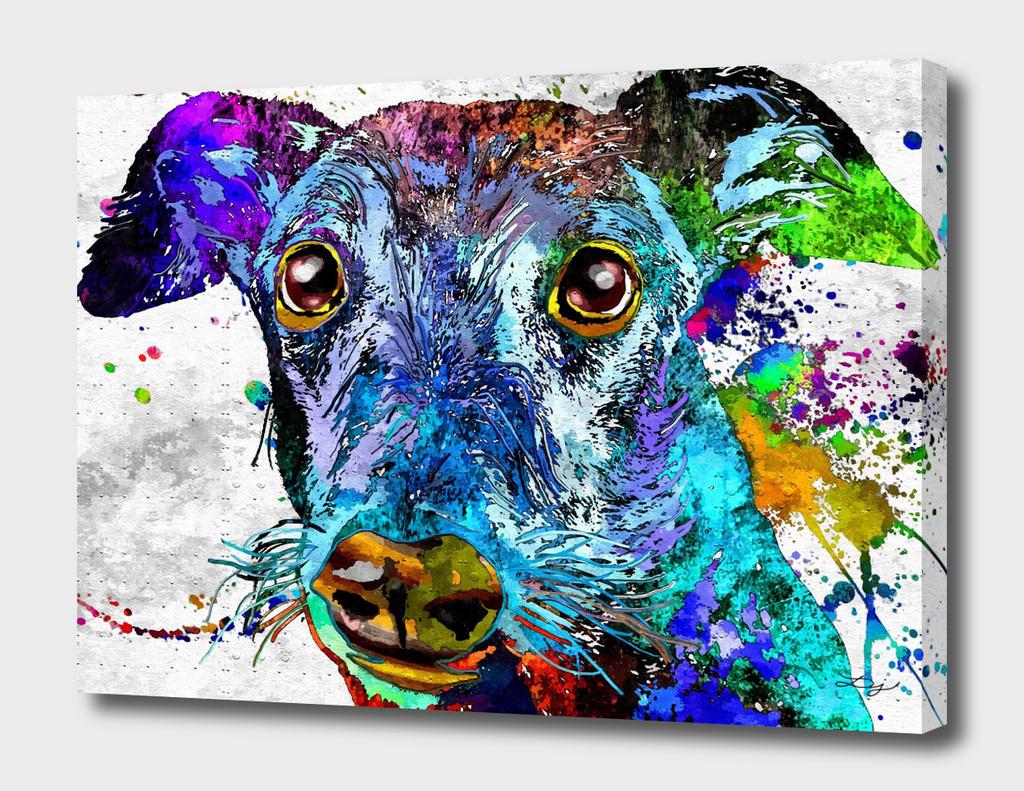 Greyhound Grunge