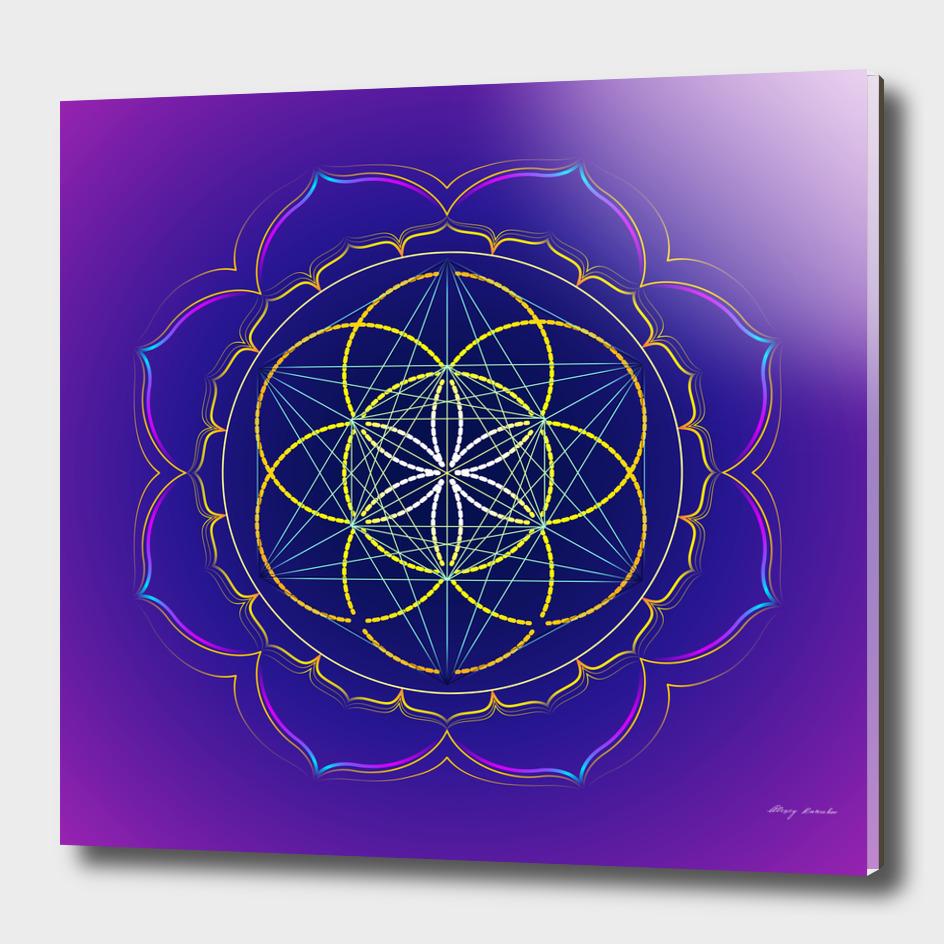 Seed of Life in the Metatron's cube mandala
