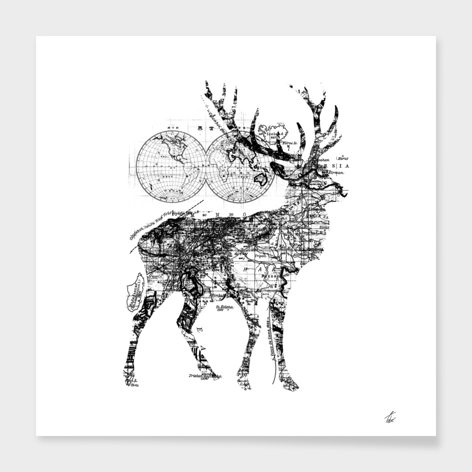 Deer Wanderlust Black and White