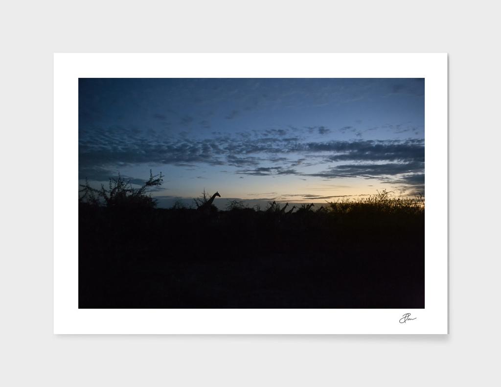 Giraffe_silhouette_01