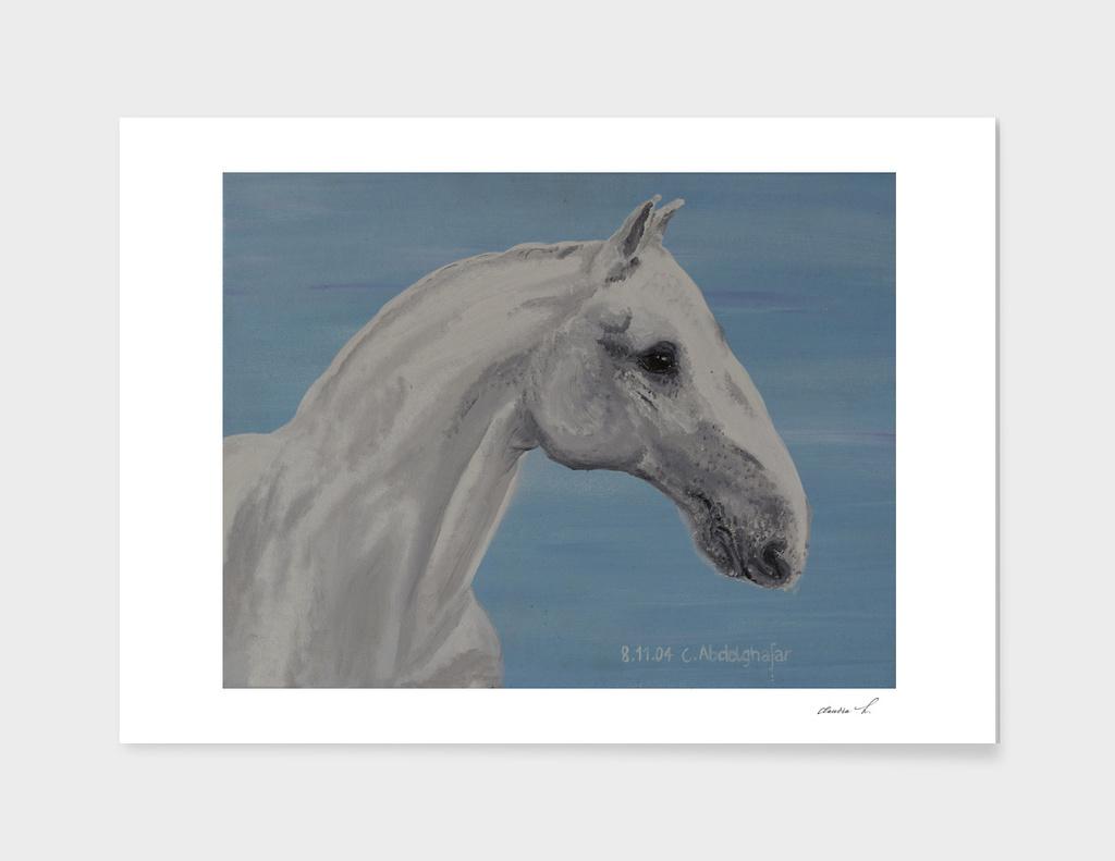Lippizan horse