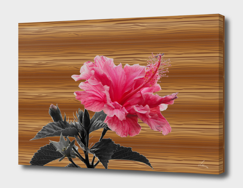 hibiscus on the wood