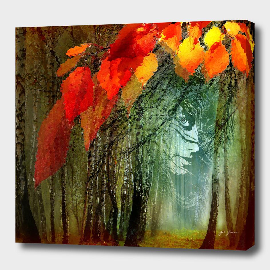 Autumn Sight