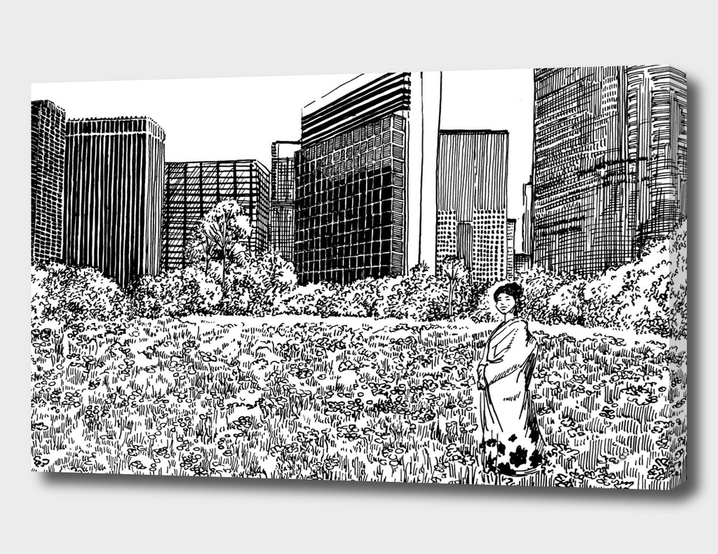 urban contrasts