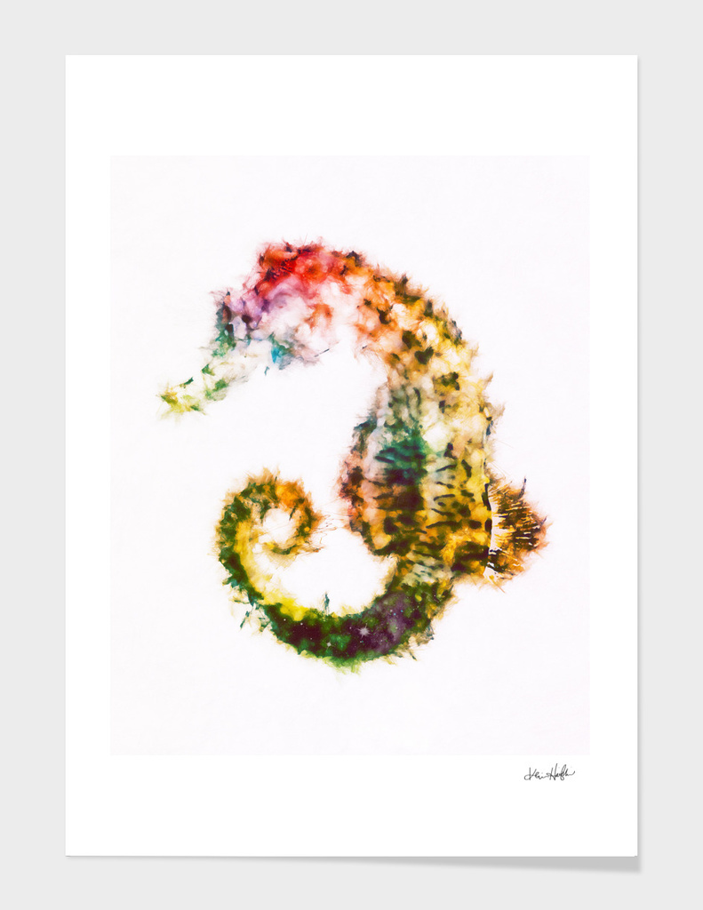 Starry-Tailed Seahorse