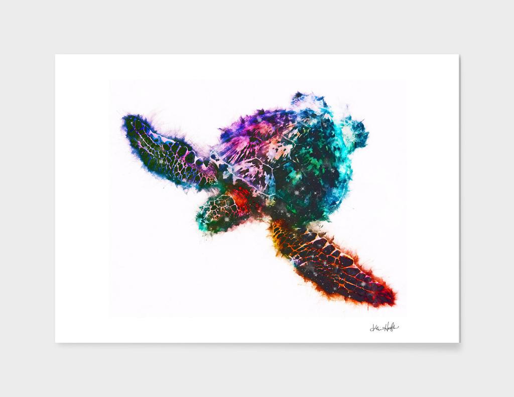 Starry-Shelled Sea Turtle