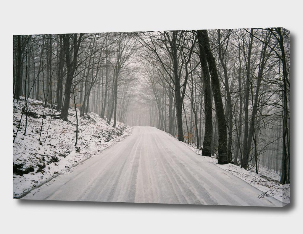 Winter memories XII