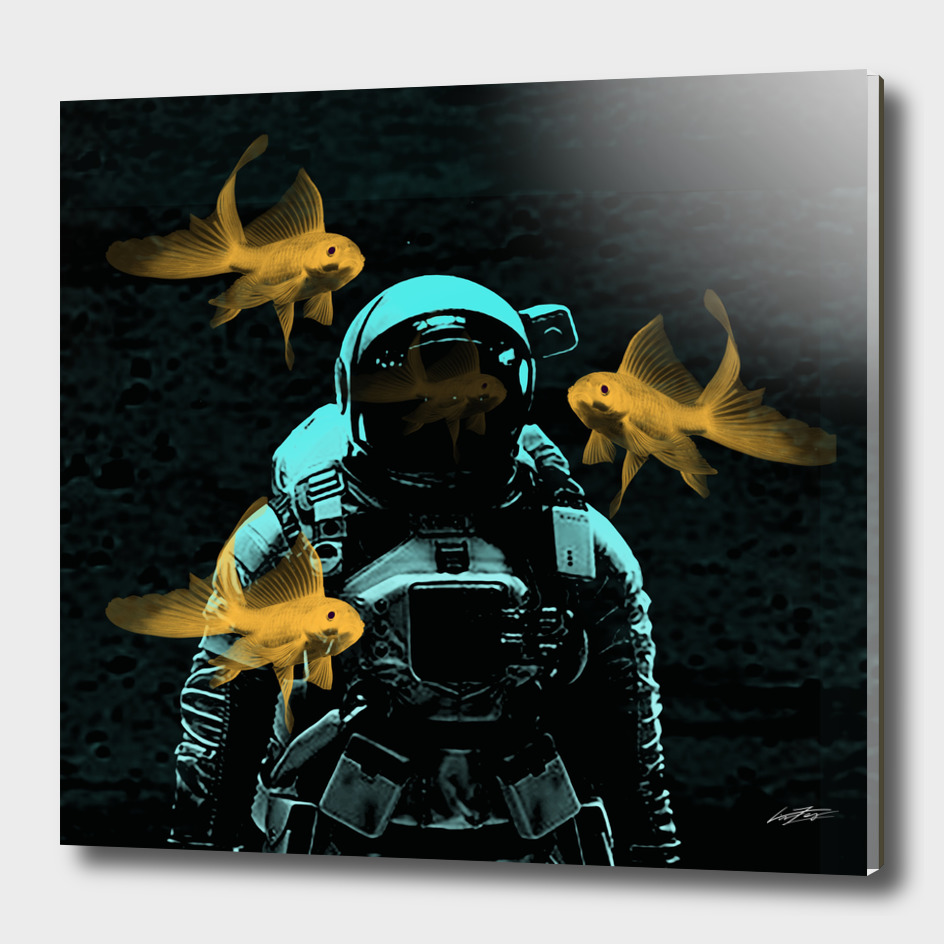 astronauts and goldfish