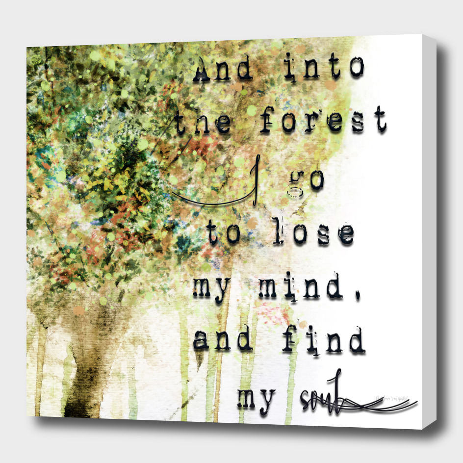 Into the Forest I Go