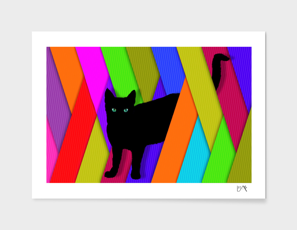BLACK CAT COLORFUL STRIPES