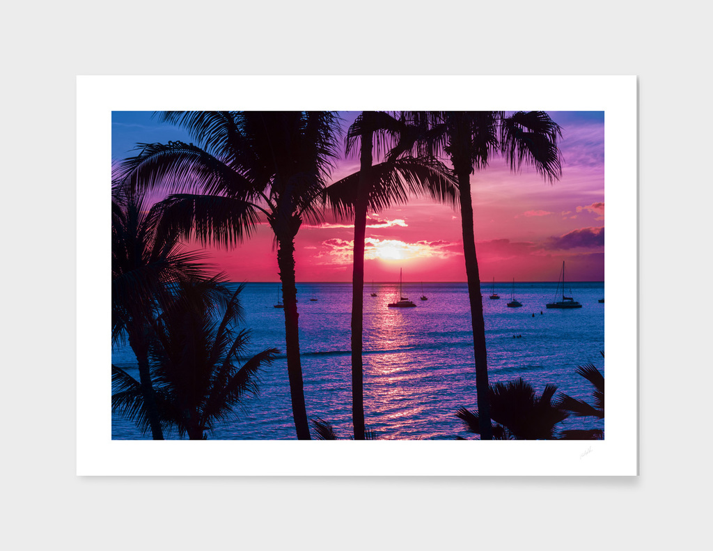 Pink Sunset Maui