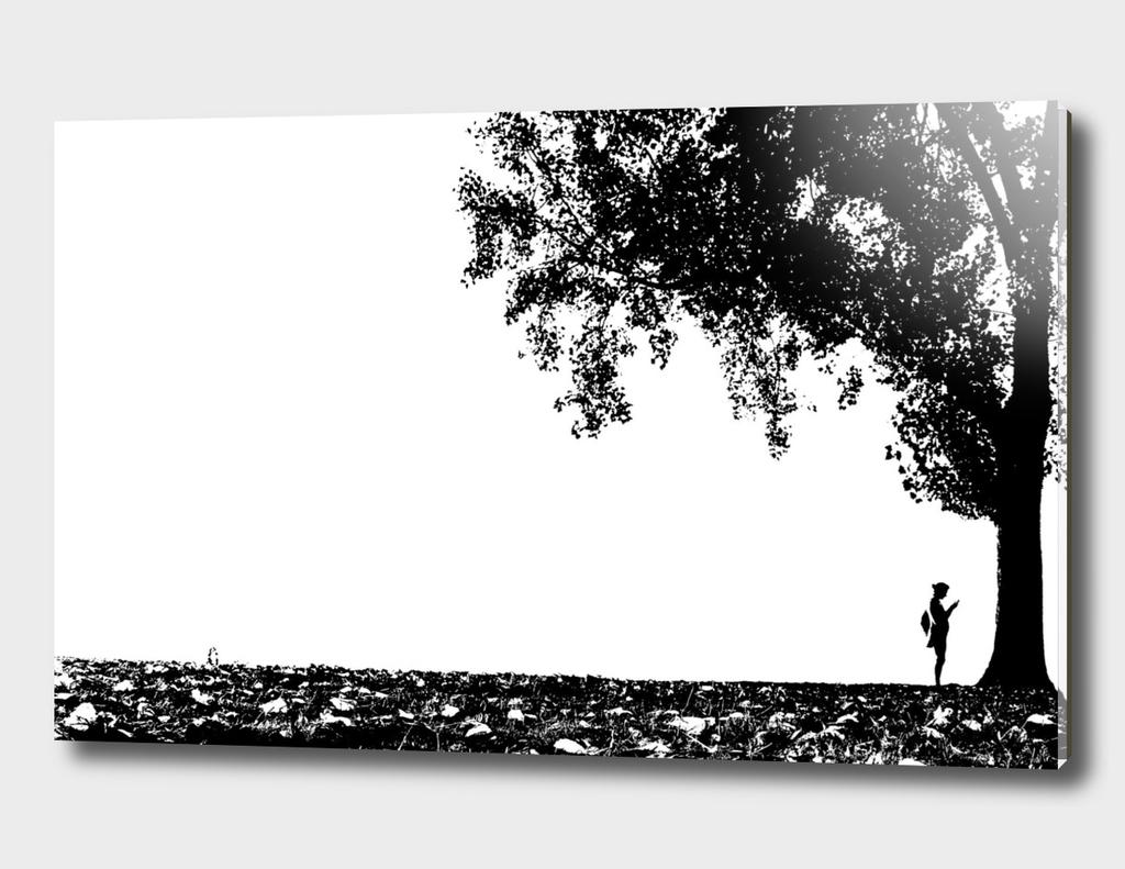 Girl Texting Under Tree