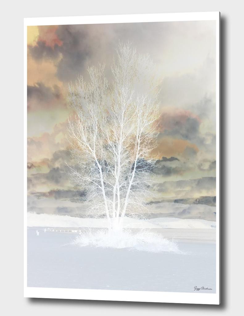 Tree 01