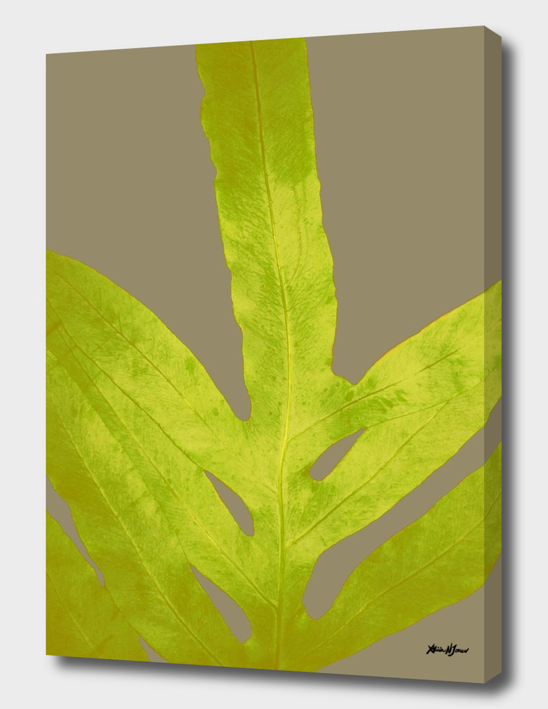 Bright Yellow Fern Greenery Leaf