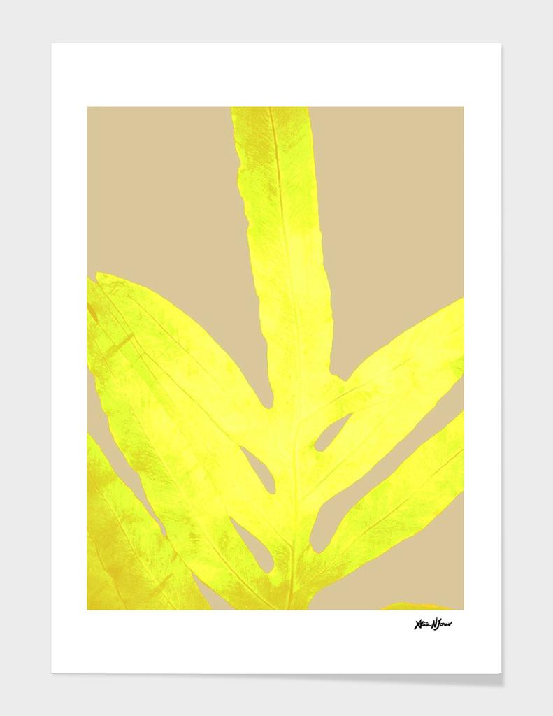 Golden Yellow Fern