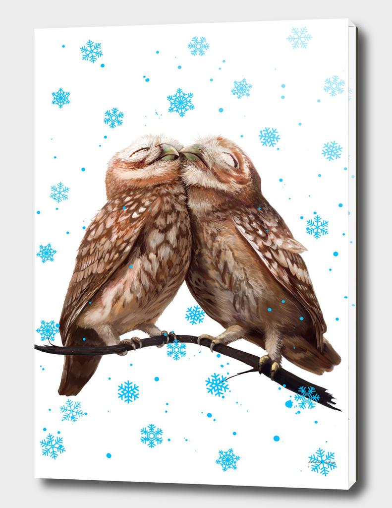 Winter owls