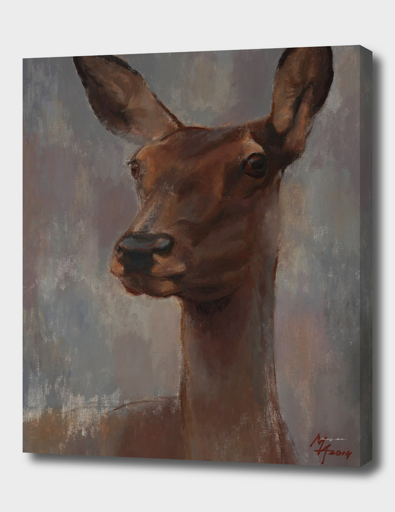 Portrait of a Young Doe
