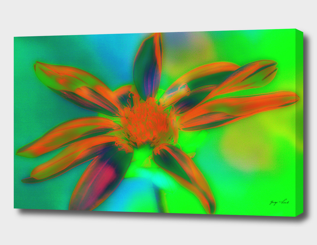 Digital Flower Painting
