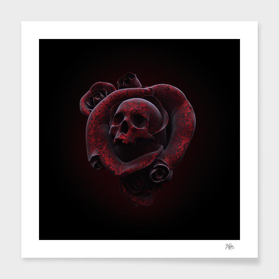 Cranium Rosa III