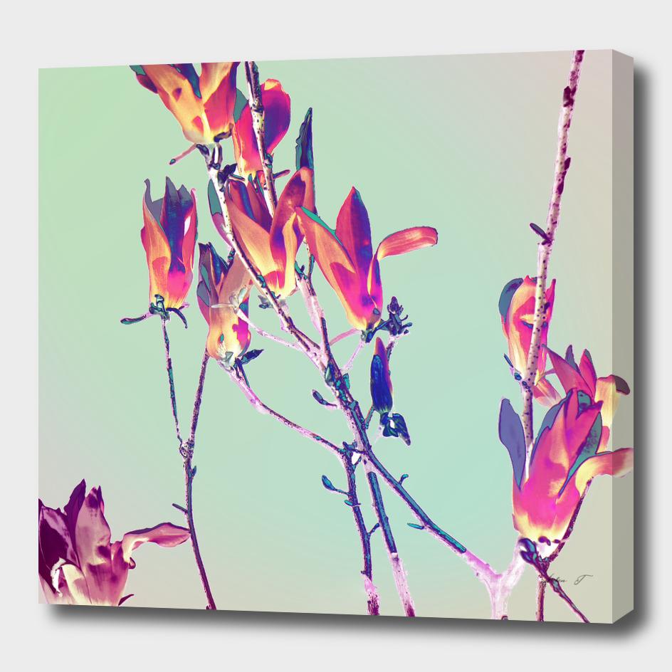 Baggin Blooms V